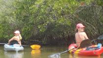 Fully Guided Kayaking Backwater Manatee and Dolphin Tour, Cape Canaveral, 4WD, ATV & Off-Road Tours