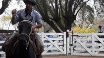 Gaucho Experience with Optional Local Cooking Class and Overnight Stay, Buenos Aires, Day Trips