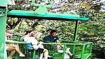 Rainforest Aerial Tram, Gamboa Tower and Forest Exhibitions Day Trip from Panama City
