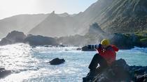 Private Shore Excursion: Wellington Photography Tour, Wellington, Ports of Call Tours