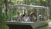 Honey Island Swamp Tour with Pick-up from New Orleans