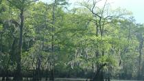 Private Tour of the Honey Island Swamp, New Orleans, Airboat Tours