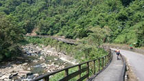 1-Day Cycling Tour: Daiyujue River Cycling Path and Pinglin Tea Industry Museum, Taipei