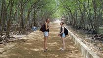 Can Gio Mangrove Forest and Monkey Island 1 Day Tour, Ho Chi Minh City, Day Trips