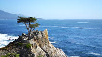 Private Tour in Monterey, Carmel und 17-Mile Day Tour von San Francisco, San Francisco, Private Day Trips