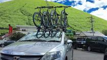 Half Day Izu Kogen Highlands Downhill Cycling Tour, Kanto, Half-day Tours