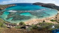 Oahu Shore Excursion: Hanauma Bay Snorkeling, Oahu, Plantation Tours