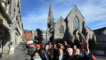 The Dublin City Walking Tour, Dublin, Half-day Tours