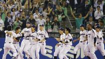 Baseball Experience with Yakult Swallows, Tokyo, Sporting Events & Packages
