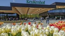 Private Tour: Keukenhof Gardens, Windmills and Delft from Rotterdam, Rotterdam, Private Sightseeing ...