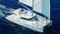 Luxe Dolphin Sail en Kona Snorkel, Big Island of Hawaii, Dolphin & Whale Watching