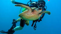 Scuba Diving for Beginners on the Leeward Coast, Oahu, Scuba Diving