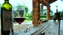 Katakolon Port Shore Excursion: Private Wine Tasting in Mercouri and Beach Tour, Peloponnese, Ports ...