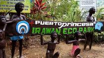 Half-Day Tour of Puerto Princesa With Zipline Flight, Puerto Princesa, Ziplines