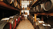 Balsamic Vinegar Tour of the Oldest Balsamic Vinegar Company in Modena, Modena, Food Tours