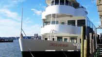 Circle Line: St. Patrick's Day Cruise, New York City, Day Cruises