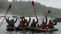 Kayak and Paddleboard tour of Willamette Falls, Portland