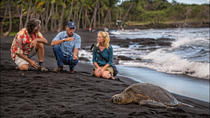 Discover Volcano Country, Big Island of Hawaii, Full-day Tours