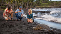 Entdecken Sie das Vulkanland, Big Island of Hawaii, Full-day Tours