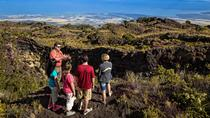 Hidden Craters Hike, Big Island of Hawaii, Full-day Tours