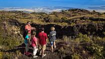 Hidden Craters Hike, Big Island of Hawaii, 4WD, ATV & Off-Road Tours