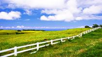 Private Tour: Big Island Organic Farms & Merriman, Big Island of Hawaii, Air Tours