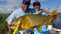 Angeln Tagesausflug am Parana River von Buenos Aires, Buenos Aires, Fishing Charters & Tours