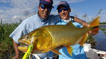 Fishing Day Trip at Parana River from Buenos Aires, Buenos Aires, Fishing Charters & Tours