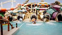 Dubai Yas Waterworld and Ferrari World Private Day Trip with Entrance Tickets, Dubaï