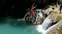 Private Usain Bolt's Tracks and Records Day Trip and Blue Hole Tour, Montego Bay, Private ...