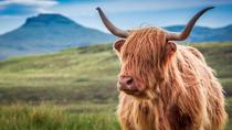 Highlights of Scotland, Glasgow, Cultural Tours