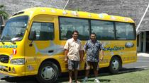 Shared Arrival Transfer: Moorea Airport or Pier to Hotel, Moorea