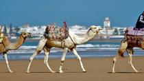 Essaouira: Private Guided Day Tour from Marrakech, Essaouira, Day Trips