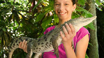 Visita guiada al zoo interactivo Croco Cun, Riviera Maya & the Yucatan, Zoo Tickets & Passes