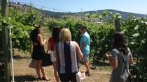 Oliver Black Sage Wine Tour from Osoyoos, Kelowna & Okanagan Valley, Wine Tasting & Winery Tours