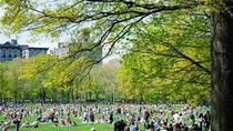 Ultimate New Yorker Picnic Experience, New York City, Dining Experiences