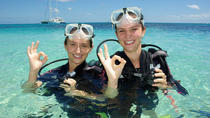 Michaelmas Cay Buceo y Snorkel Cruise desde Palm Cove, Palm Cove, Snorkelling