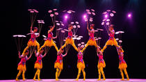 Beijing Chaoyang Acrobatic Show with Private Transfer, Beijing, Private Transfers