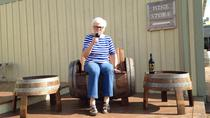 Sainte-Famille Vineyard and Winery Tour and Tasting, Nova Scotia