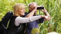 Private Luxury Bird Watching Tour for Beginners with Muyil Ruins, Cancun, Nature & Wildlife