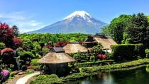 1-Day Mt Fuji Bus Tour with Fuji Airways 4-D and Ninja Experience, Tokyo, null