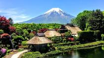 1-Day Mt Fuji Bus Tour with Fuji Airways 4D and Ninja Experience, Tokyo, Day Trips