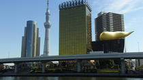 Half Day Sightseeing Tour in Tokyo, Tokyo, Walking Tours