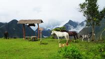 5-Day Salkantay Trail Trekking Tour from Cusco, クスコ
