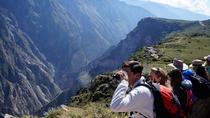 Full Day Arequipa Colca Cañon Tour, Arequipa, Full-day Tours