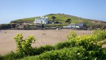 South Devon Coast and Country luxury private guided tour from Devon, Devon, Private Day Trips