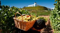 Wine Tasting Tour from Santiago: Casablanca Valley and Four Vineyards, Santiago, Wine Tasting &...