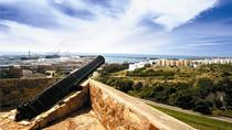 Port Elizabeth Shore Excursion: Port Elizabeth Walking Tour, Port Elizabeth, Ports of Call Tours