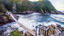 Tsitsikamma National Park Guided Day Tour from Port Elizabeth, Port Elizabeth, Day Trips
