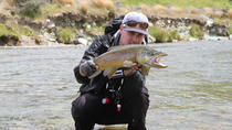Guided Fly Fishing Trip from Wanaka, Wanaka, Fishing Charters & Tours
